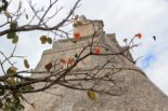 Uxmal, The Ancient Maya City You Have To See to Believe