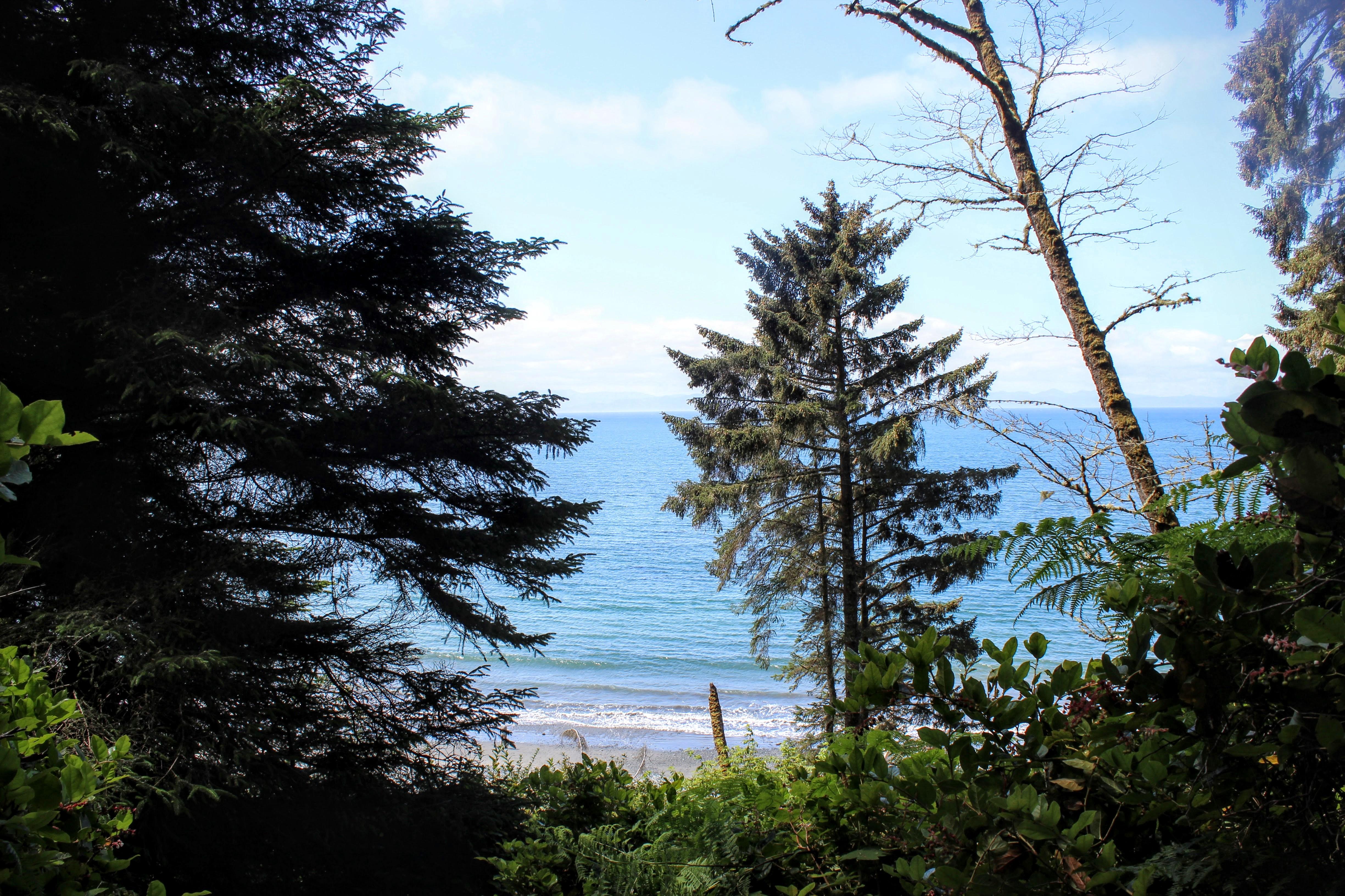 A glimpse of Sombrio beach
